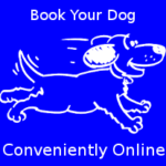 Click here to book an adult dog course