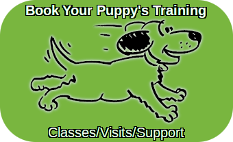 positively-puppies-premium-courses-quick-book-icon-01-Jun-2021